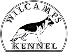 Wilcamp´s Kennel